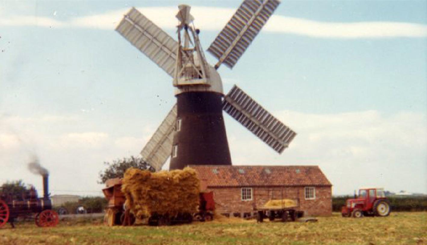 Windmill - Vitalin